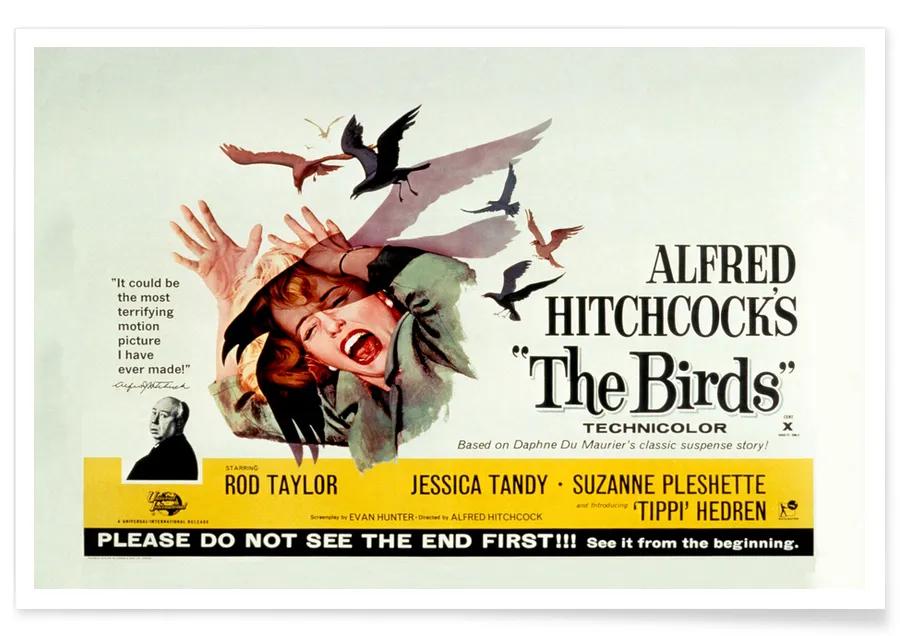 Alfred Hitchcock 'The Birds' Retro Movie Poster | JUNIQE